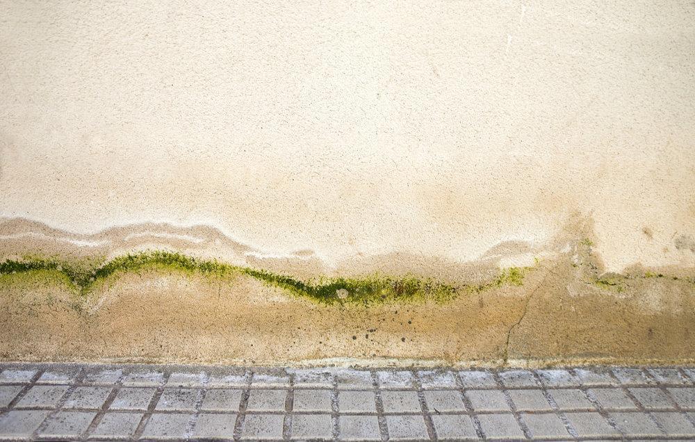 Osuszanie zalanych murów / Wrocław House